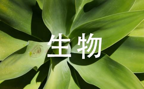 减数第一次分裂后期非同源染色体自由组合是什么意思?减数第一次分裂后期不是同源染色体分离吗?怎么还有自由组合.假如同源染色体两对同源染色体AaBb,他们减一后期分成一个Ab一个aB,